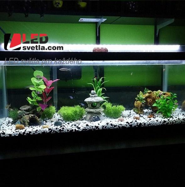 LED akvárium